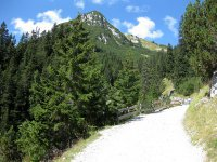 Wangalm und Wettersteinhütte: Bild #25