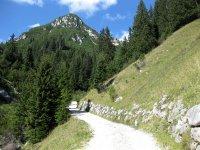 Wangalm und Wettersteinhütte: Bild #26