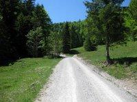 Schronbachtal: Bild #38
