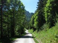 Schronbachtal: Bild #40