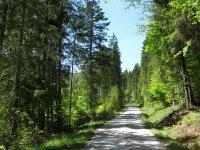 Schronbachtal: Bild #41