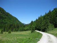 Schronbachtal: Bild #56