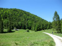 Schronbachtal: Bild #57