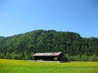 Schronbachtal: Bild #62