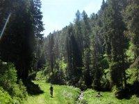 Maurerberghütte: Bild #9