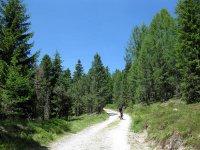 Maurerberghütte: Bild #22