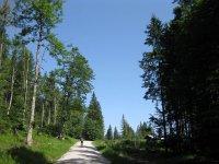 Rund um den Roßkopf: Bild #14