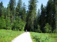 Rund um den Roßkopf: Bild #17