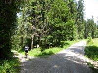 Rund um den Roßkopf: Bild #19