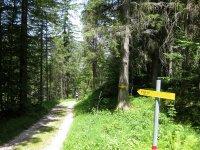 Rund um den Roßkopf: Bild #20