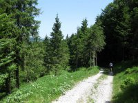 Rund um den Roßkopf: Bild #21
