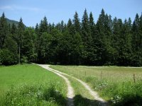 Rund um den Roßkopf: Bild #26