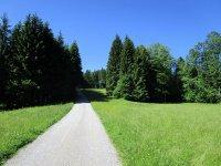 Blomberg-Runde: Bild #7