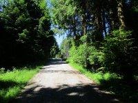Blomberg-Runde: Bild #8
