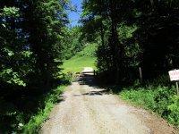 Blomberg-Runde: Bild #14