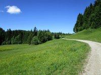 Blomberg-Runde: Bild #15