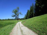 Blomberg-Runde: Bild #16