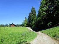 Blomberg-Runde: Bild #17