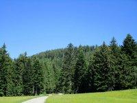 Blomberg-Runde: Bild #18