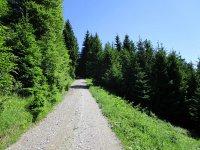 Blomberg-Runde: Bild #22