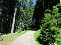Blomberg-Runde: Bild #23