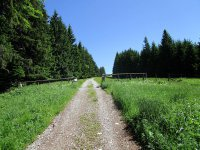 Blomberg-Runde: Bild #26