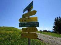Blomberg-Runde: Bild #28