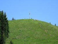 Blomberg-Runde: Bild #30