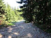 Blomberg-Runde: Bild #38