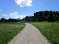 Blomberg-Runde: Bild #62