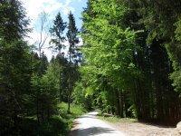Fockensteinhütte: Bild #4