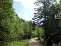 Fockensteinhütte: Bild #5