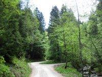 Fockensteinhütte: Bild #6