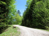 Fockensteinhütte: Bild #11