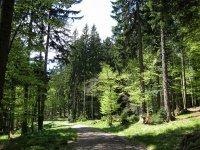 Fockensteinhütte: Bild #14