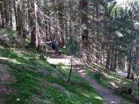Fockensteinhütte: Bild #17