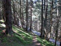 Fockensteinhütte: Bild #18