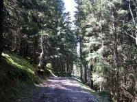 Fockensteinhütte: Bild #19