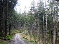 Fockensteinhütte: Bild #21