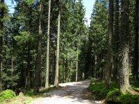 Fockensteinhütte: Bild #22