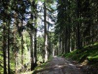 Fockensteinhütte: Bild #23