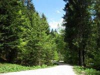 Fockensteinhütte: Bild #26