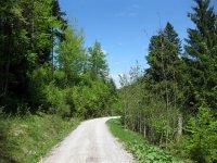 Fockensteinhütte: Bild #27