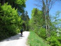 Fockensteinhütte: Bild #30