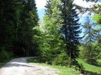 Fockensteinhütte: Bild #31