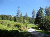 Taubensee: Bild #14