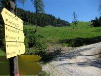 Taubensee: Bild #15