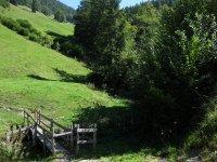 Taubensee: Bild #27