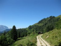 Taubensee: Bild #33