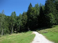 Taubensee: Bild #35